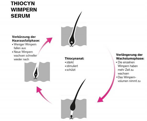 Thiocyanat Thiocyn Wimpernserum